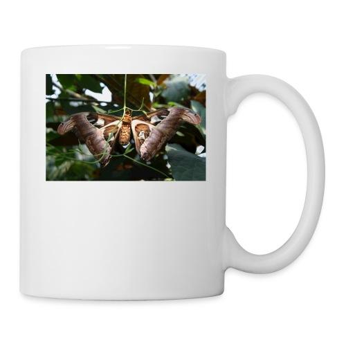 Atlas - Coffee/Tea Mug