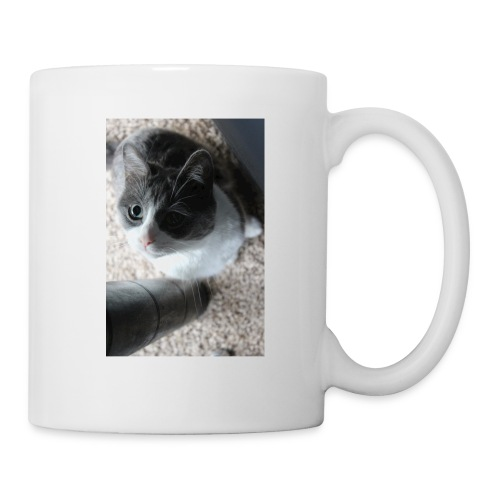 Adorable kitty staring positive messages - Coffee/Tea Mug