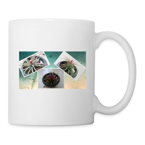 Air plant - Coffee/Tea Mug