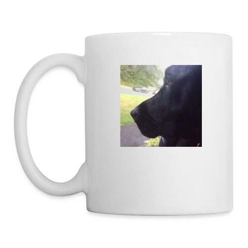 Casey And The Window - Coffee/Tea Mug