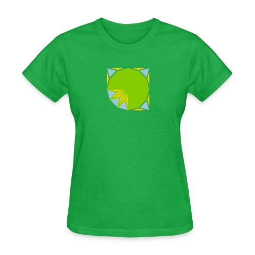 area 12 gon of radius 1 3 - Women's T-Shirt