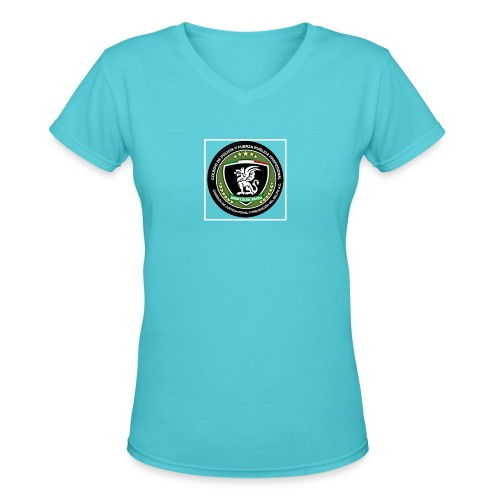 Its for a fundraiser - Women's V-Neck T-Shirt