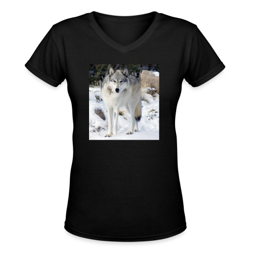 Canis lupus occidentalis - Women's V-Neck T-Shirt