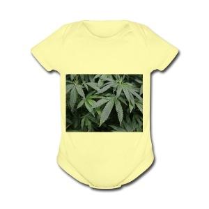 cannabis - Short Sleeve Baby Bodysuit