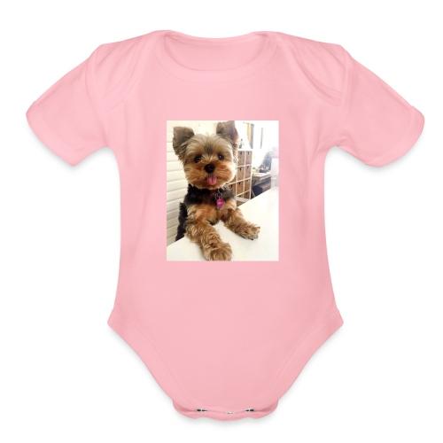 sofia - Organic Short Sleeve Baby Bodysuit