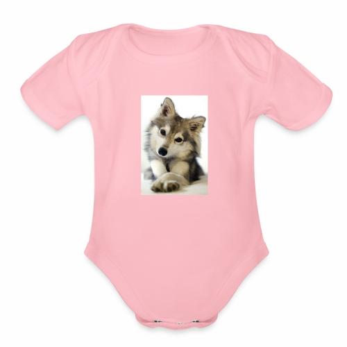 cute dog1 - Organic Short Sleeve Baby Bodysuit