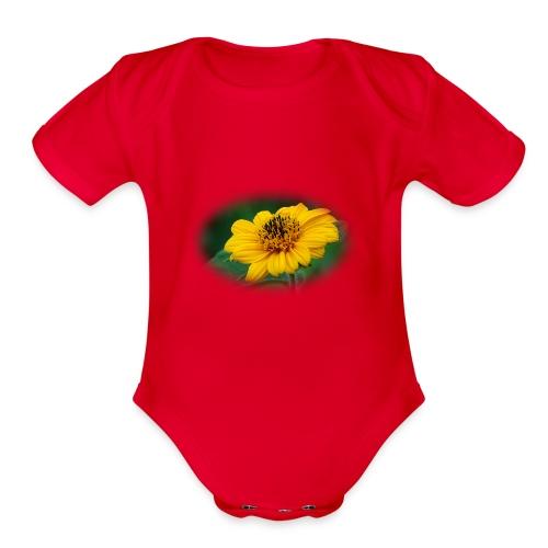 tridax procumbean - Organic Short Sleeve Baby Bodysuit