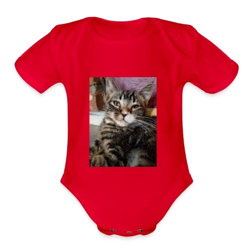 Eli the fat brown tabby - Organic Short Sleeve Baby Bodysuit