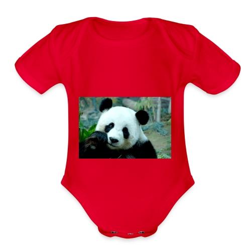 Panda lovers - Organic Short Sleeve Baby Bodysuit
