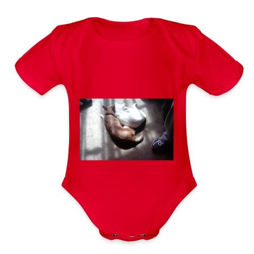Best friends - Organic Short Sleeve Baby Bodysuit