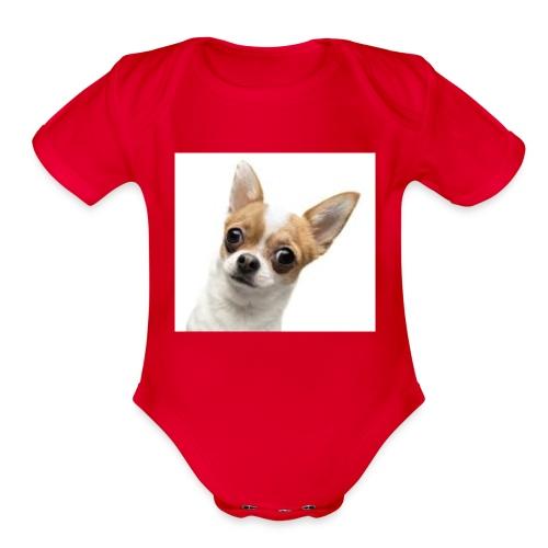 95B1CE1E 5A6E 4E11 A4B4 1D9376447F0A - Organic Short Sleeve Baby Bodysuit