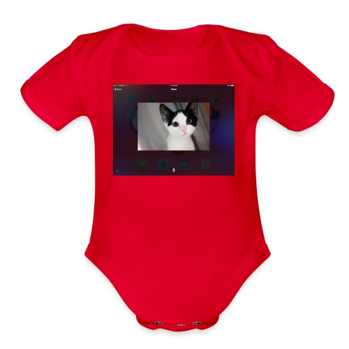 Tineey cat - Organic Short Sleeve Baby Bodysuit