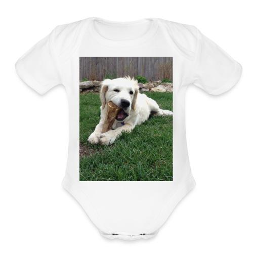 D29839C9 C526 4254 9BC0 29987806DC45 - Organic Short Sleeve Baby Bodysuit
