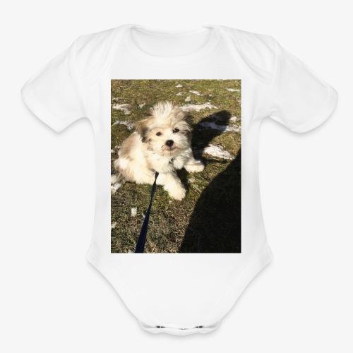 Rocky Having Fun - Organic Short Sleeve Baby Bodysuit