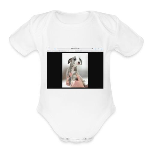 Whippet - Organic Short Sleeve Baby Bodysuit