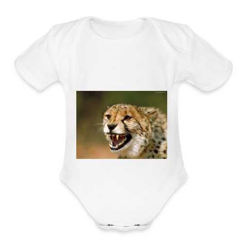 cheetah big cat - Organic Short Sleeve Baby Bodysuit