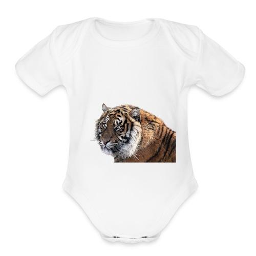IMG_1156 - Organic Short Sleeve Baby Bodysuit