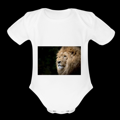 example - Organic Short Sleeve Baby Bodysuit