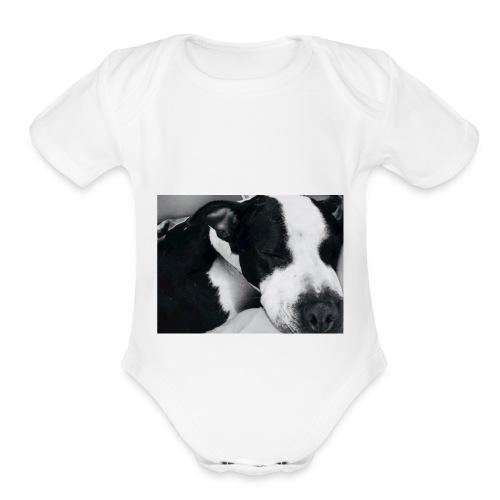 9BDF4E7B 389A 4D50 A362 89D2129FC5DB - Organic Short Sleeve Baby Bodysuit