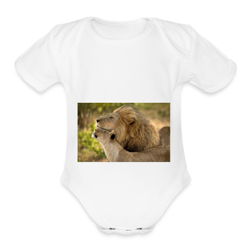 lions in love - Organic Short Sleeve Baby Bodysuit