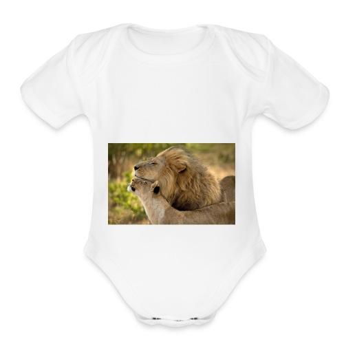 lions in love - Organic Short Sleeve Baby Bodysuit