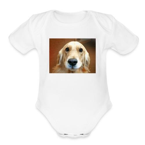 Snapshot 20180127 - Organic Short Sleeve Baby Bodysuit