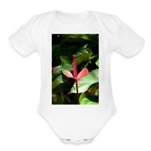 Claudia 0138 - Organic Short Sleeve Baby Bodysuit