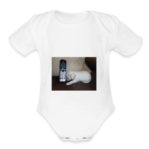 DSCN0498 - Organic Short Sleeve Baby Bodysuit
