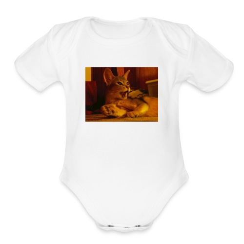 Wow you scared me!!!! - Organic Short Sleeve Baby Bodysuit