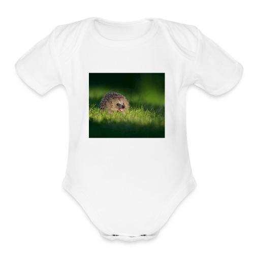 IMG 3048 - Organic Short Sleeve Baby Bodysuit