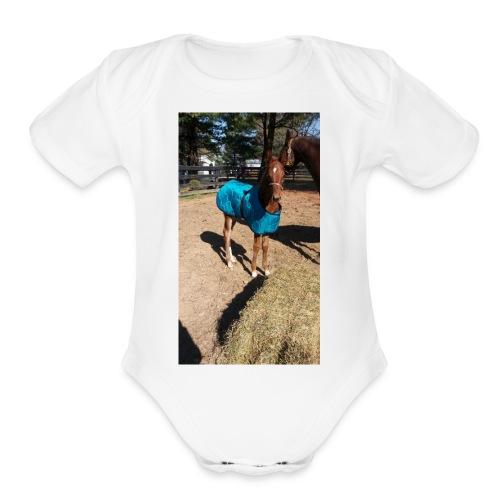 FE35E077 C14A 4BF6 BD1F 12B325744101 - Organic Short Sleeve Baby Bodysuit