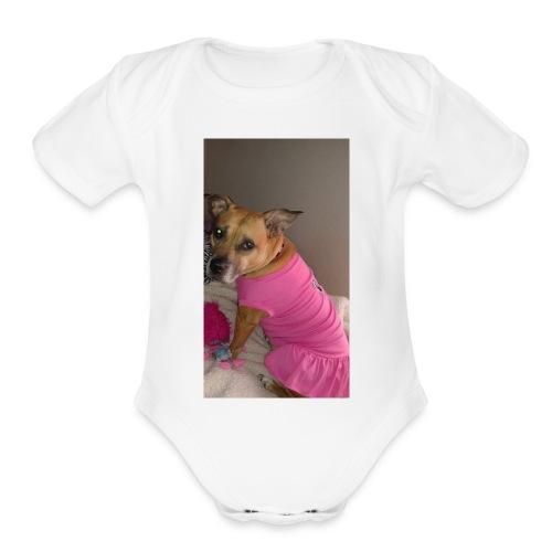 Jas - Organic Short Sleeve Baby Bodysuit
