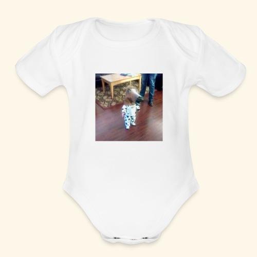 Despa-cito - Organic Short Sleeve Baby Bodysuit