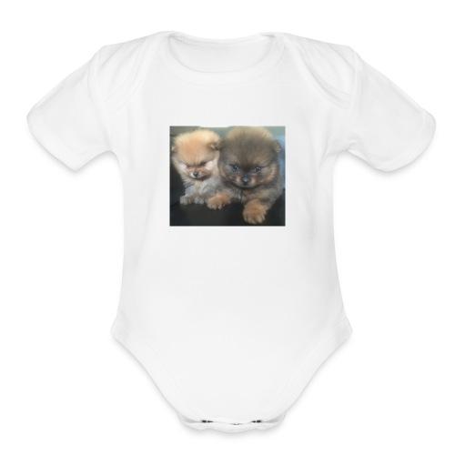 Yandel - Organic Short Sleeve Baby Bodysuit