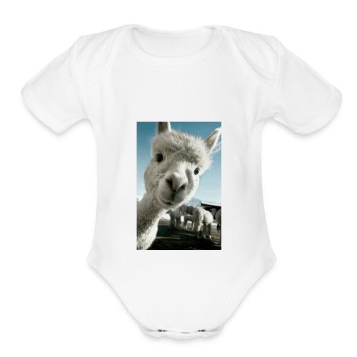 3b4675b3f248ec66334b5254a286d5e1 - Organic Short Sleeve Baby Bodysuit