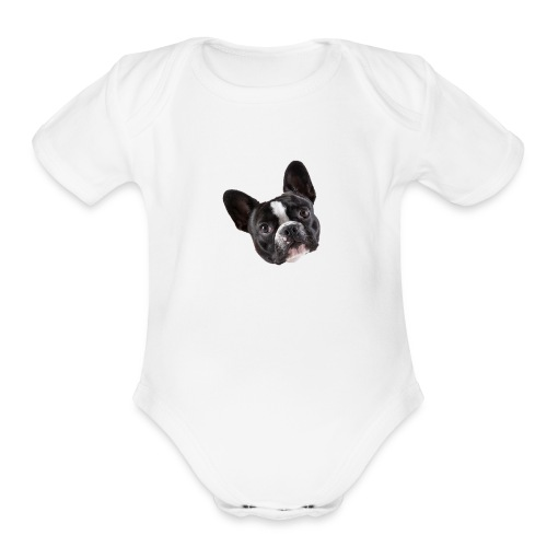French Bulldog Puppy Face - Organic Short Sleeve Baby Bodysuit