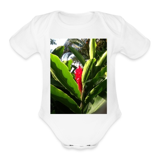 jamaica love - Organic Short Sleeve Baby Bodysuit
