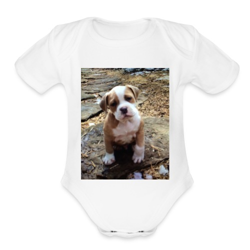 IMG_6105 - Organic Short Sleeve Baby Bodysuit