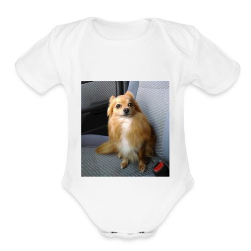 Max - Organic Short Sleeve Baby Bodysuit