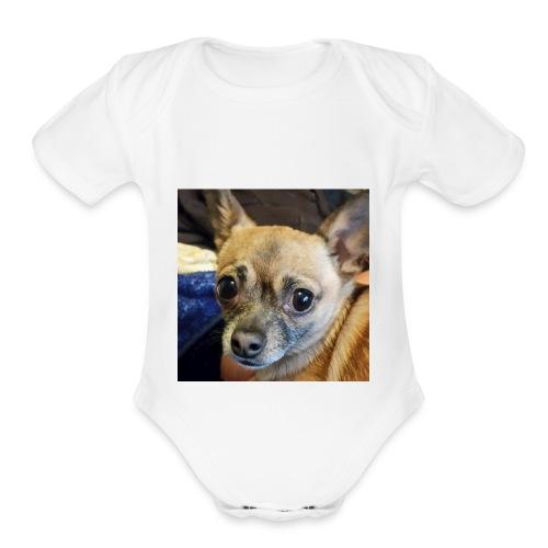 Pablo - Organic Short Sleeve Baby Bodysuit