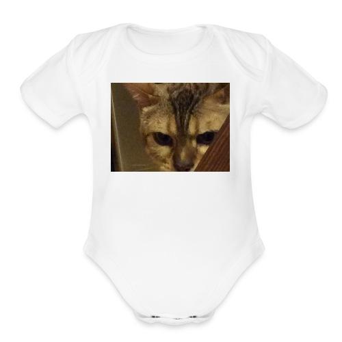 A cat - Organic Short Sleeve Baby Bodysuit