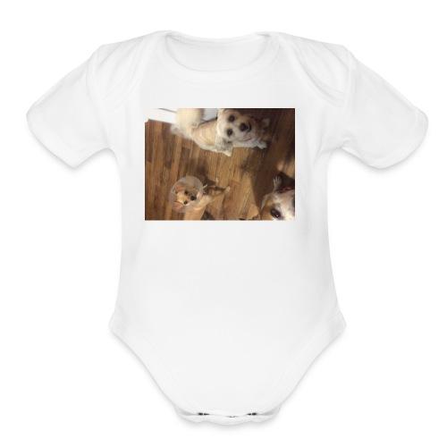 IMG 0119 - Organic Short Sleeve Baby Bodysuit