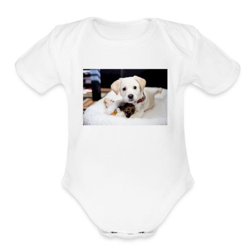 F28E74F4 FA21 476C A4A6 E034923B0079 - Organic Short Sleeve Baby Bodysuit