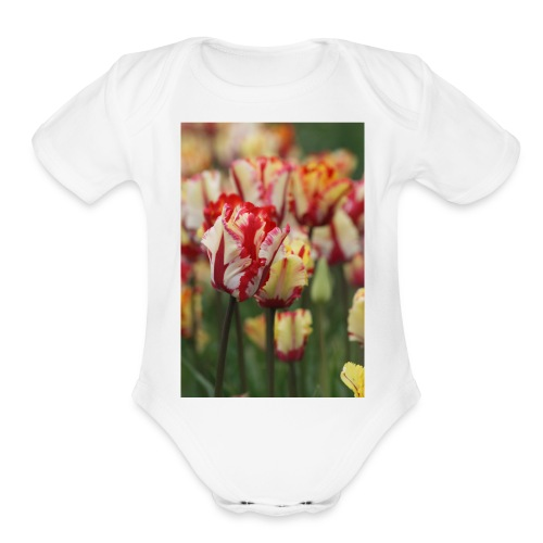 RED Spill - Organic Short Sleeve Baby Bodysuit