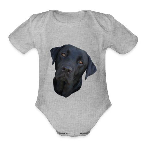 bently - Organic Short Sleeve Baby Bodysuit