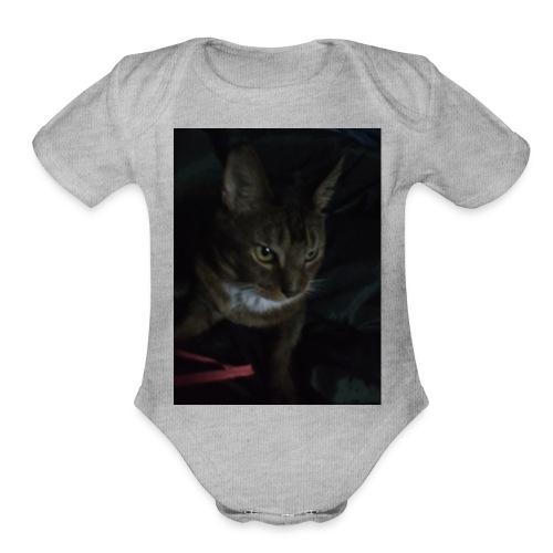 IMG_20161125_193632 - Organic Short Sleeve Baby Bodysuit