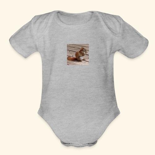 Red Squirrel - Organic Short Sleeve Baby Bodysuit
