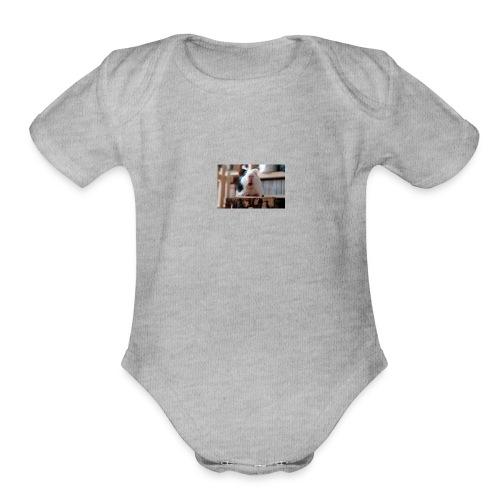 funny guinea pig - Organic Short Sleeve Baby Bodysuit