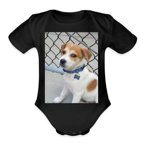 Cassius - Organic Short Sleeve Baby Bodysuit