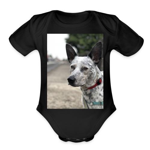 66A8AF35 2DB7 46D7 A3A9 32F0CF0E9399 - Organic Short Sleeve Baby Bodysuit